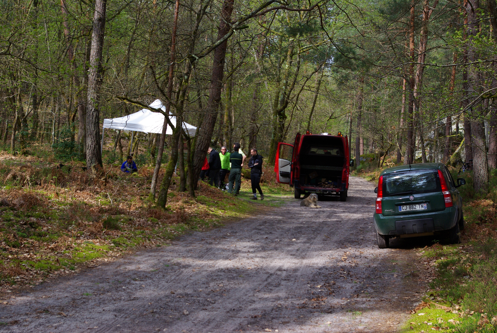 Eco chantier ONF Fontainebleau 2016 (4)