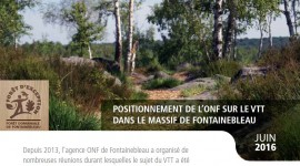 MBF - image dossier VTT fontainebleau